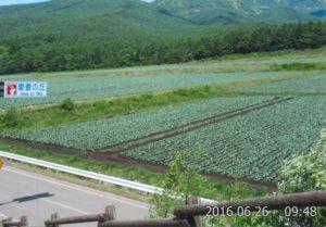 嬬恋村にある愛妻の丘