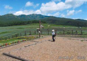 愛妻の丘写真1
